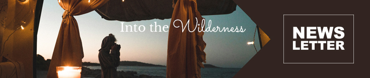 Newsletter: Into the Wilderness