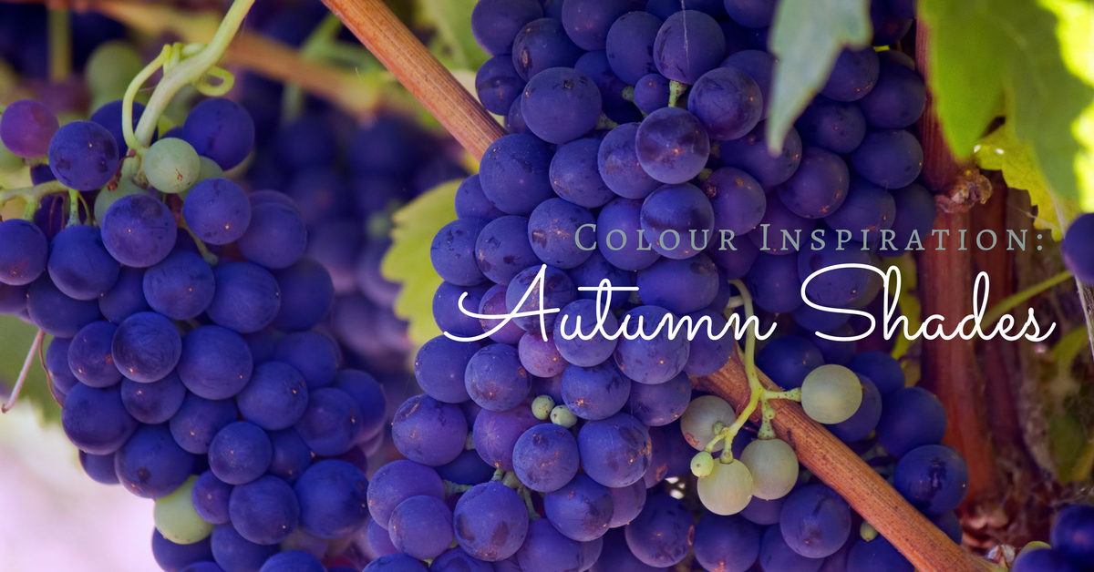 Find inspiration for the season ahead with our Autumn Shades colour palettes