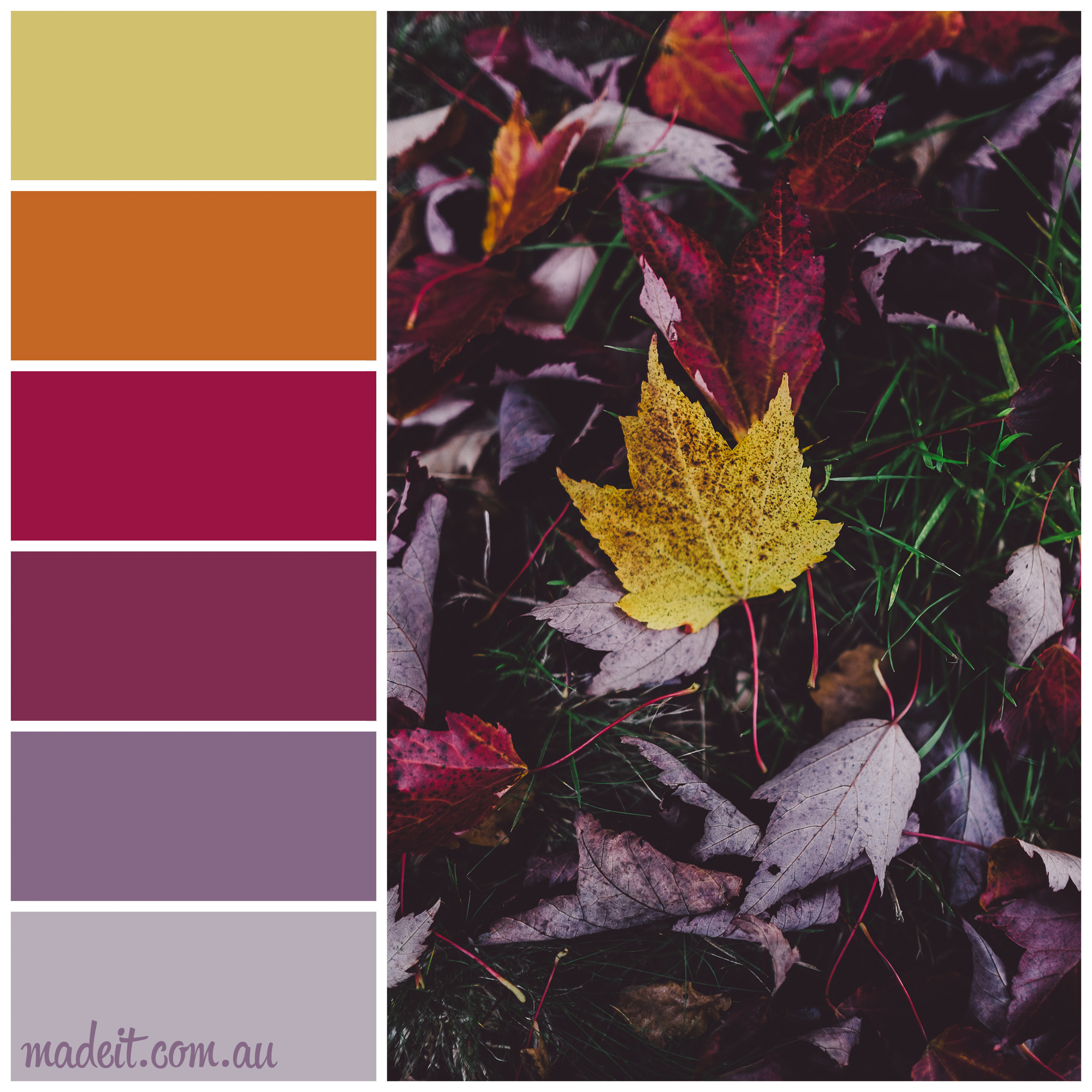 Colour Inspiration: Rich shades of fallen autumn leaves