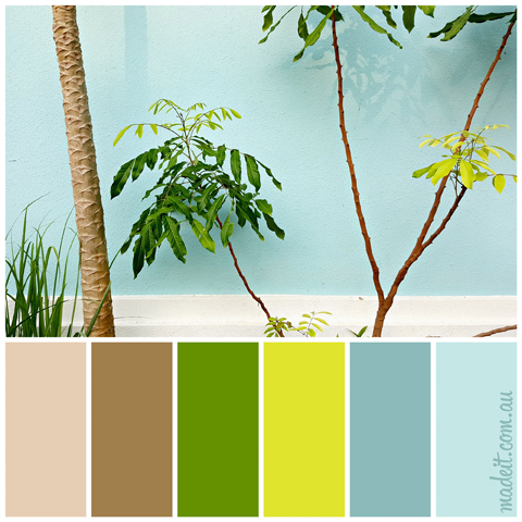 Colour Schemes to Inspire.  This tropical palette has inspired us this week.