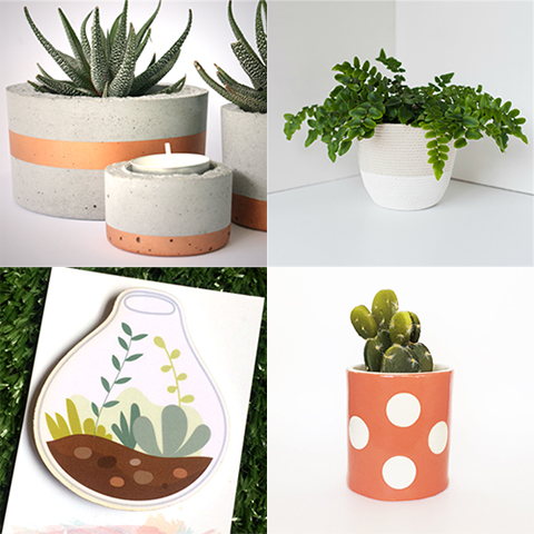 Plant Finds