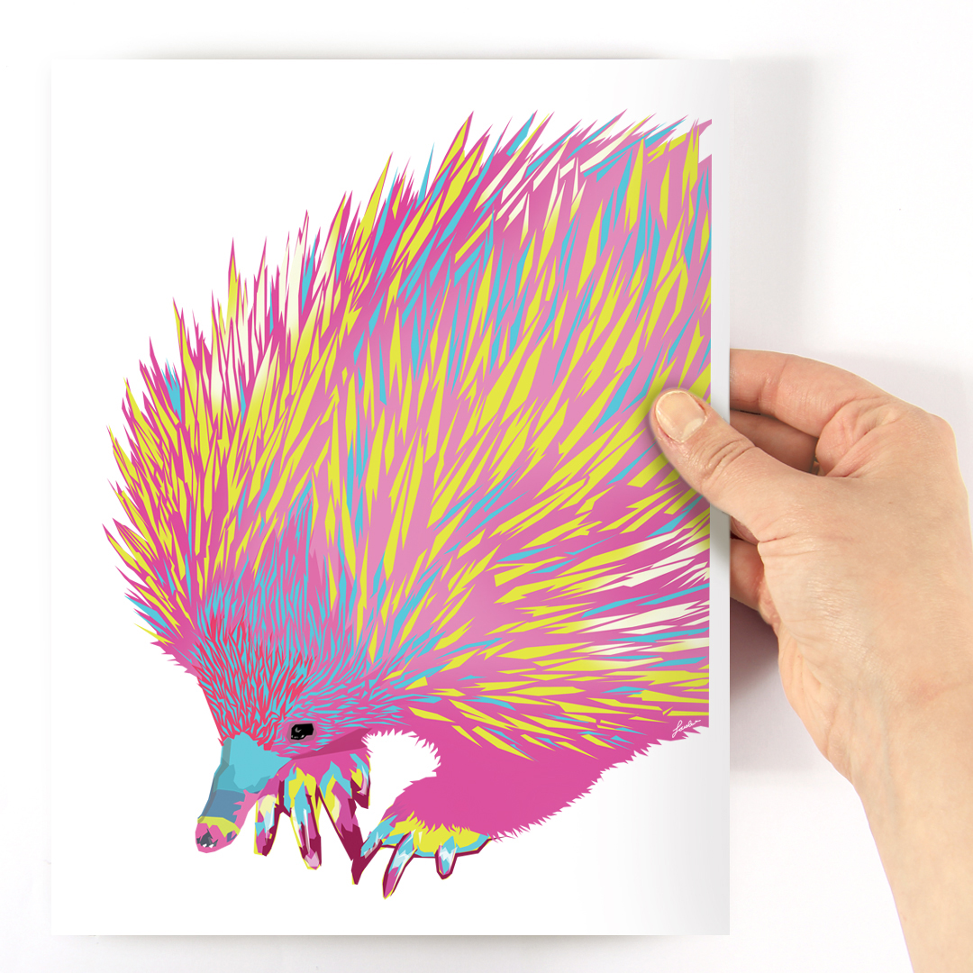 Sara's bright pink, yellow, and aqua echidna A4 print
