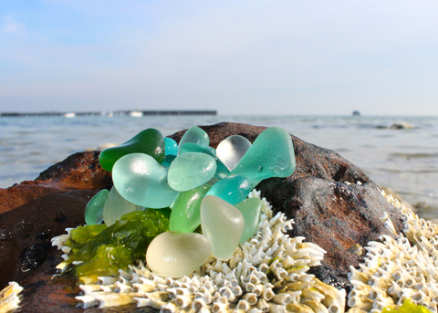 Mermaid Treasure: sea glass of Port Philip Bay