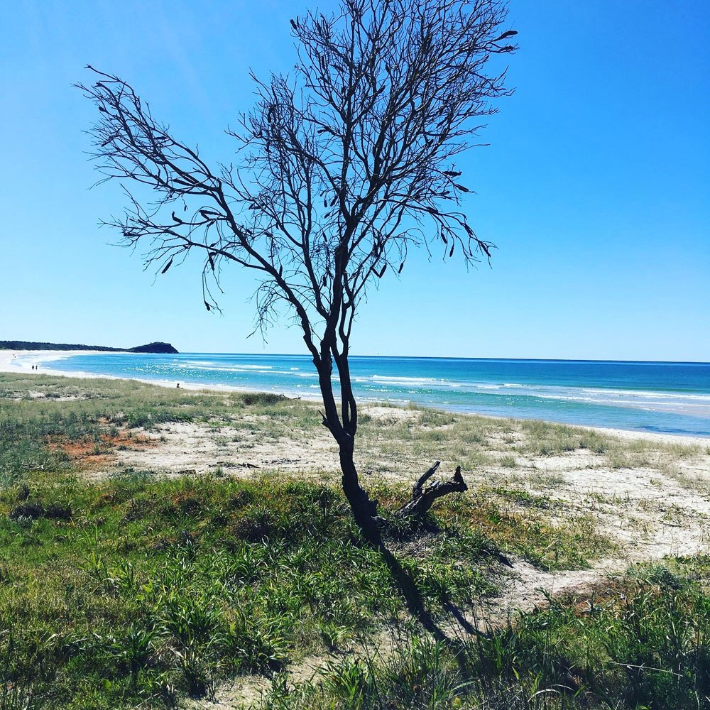 The family playground: the beautiful northern NSW coastline not far from Caroline's rural home