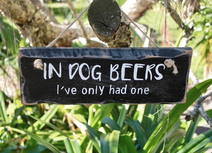 Funny reclaimed timber sign: In dog beers I've only had one
