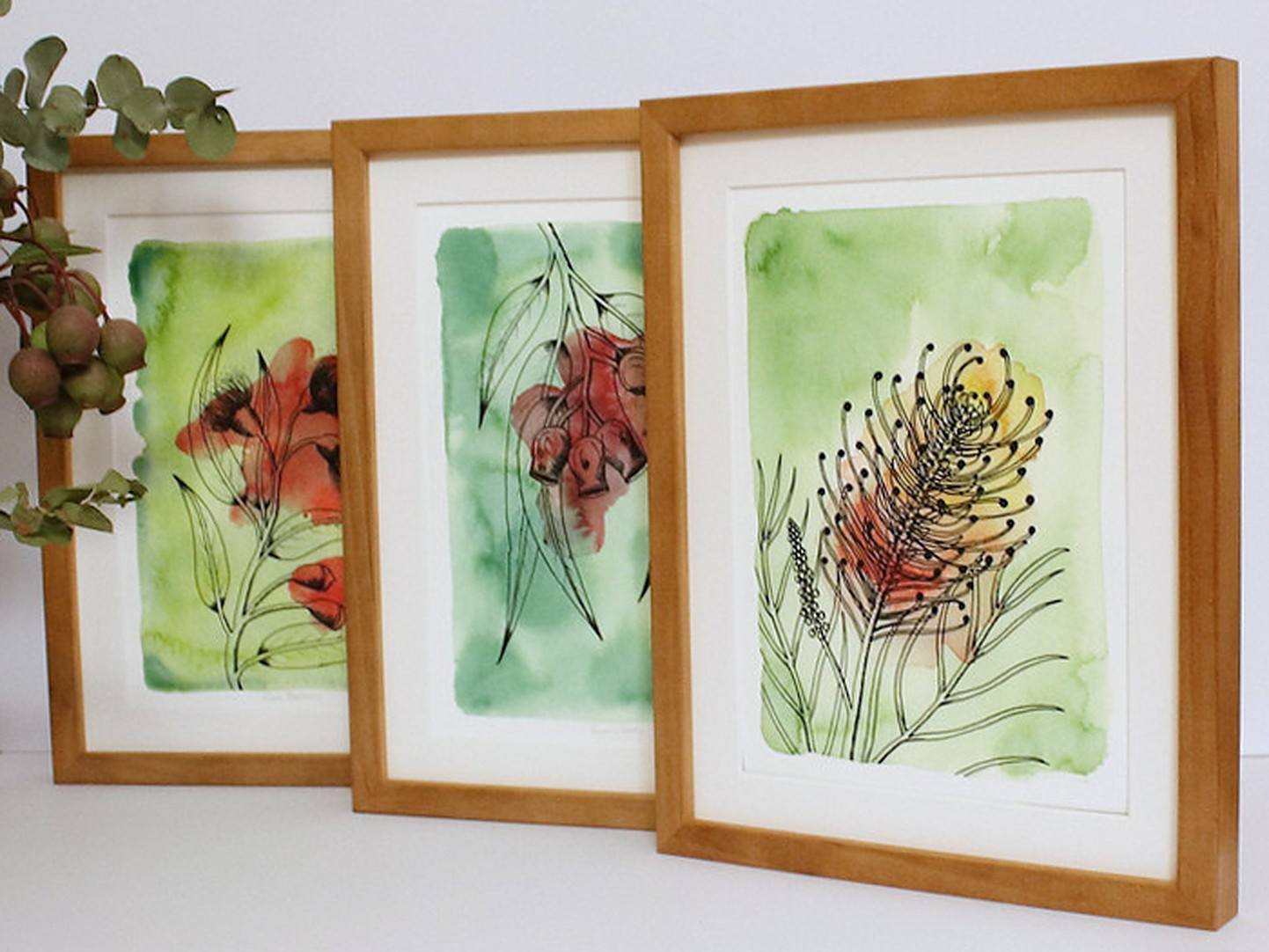 A range of framed acrylic and ink artworks depicting native Australian plants, by Kb Handmade Art