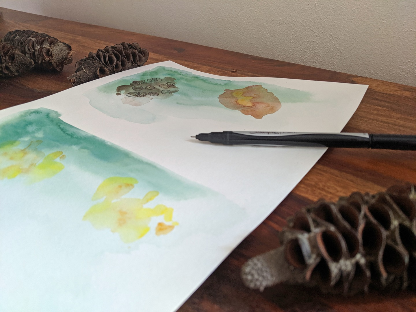 Work in progress by Kb Handmade Art; acrylic washes in neutral tones with ink details depicting the eyes of the Banksia seeds scattered on the same table