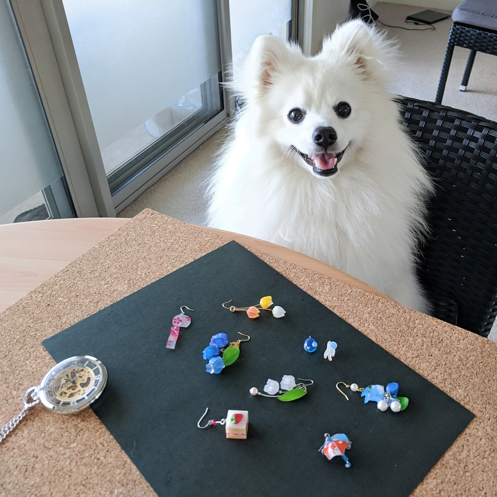 Fluffy workshop assistant, Shinji the Japanese Spitz and some of Kei's kawaii earring collection