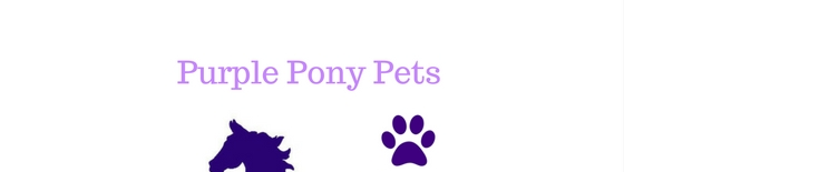 Purple Pony Pets