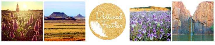 Destined Feather