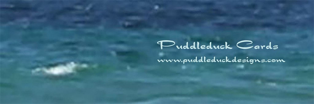 Puddleduck Cards